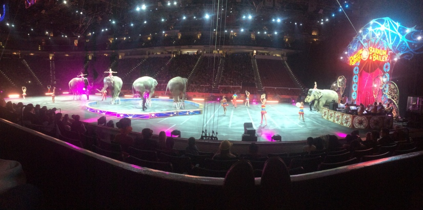 circus panoramic view